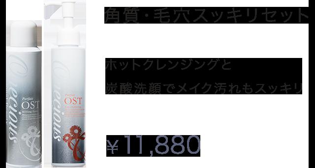 角質・毛穴スッキリセット ホットクレンジングと炭酸洗顔でメイク汚れもスッキリ ¥11,880