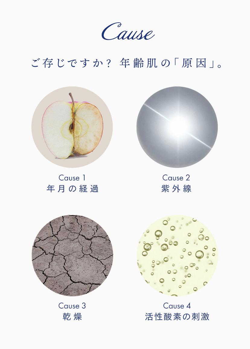Cause ご存じですか? 年齢肌の「原因」。 Cause 1 年月の経過 Cause 2 紫外線 Cause 3 乾燥 Cause 4 活性酸素の刺激